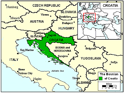 Bosniak in Croatia